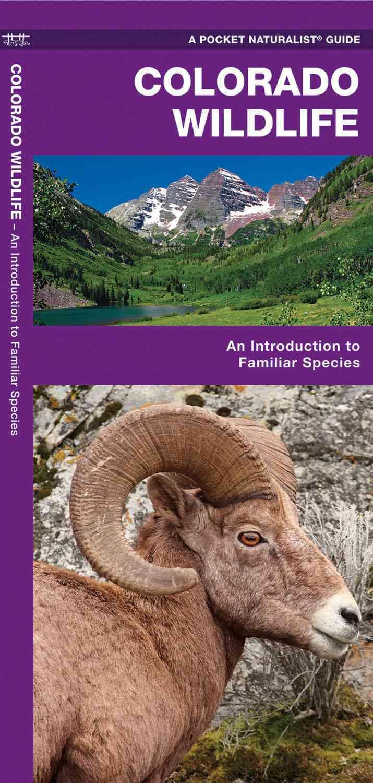 Colorado Wildlife By Kavanagh, James/ Leung, Raymond (ILT)
